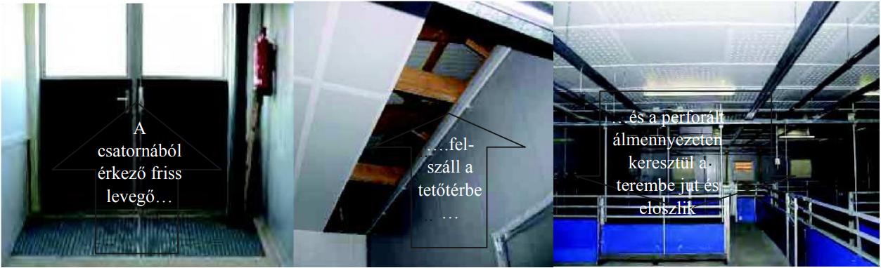 9. kép:A csatornából érkező friss levegő a hőszigetelt tetőtérbe jut, és a perforált álmennyezeten keresztül a állatok életterébe érkezik.
